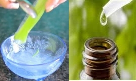 aloe vera gel tea tree oil